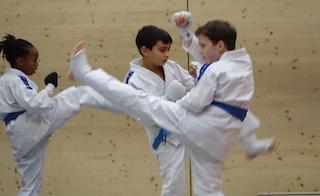 Karate voor tieners